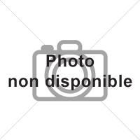 RX RUBAN MASQUAGE JOINT DE P-B (10mm) 50mm X 10m 06349